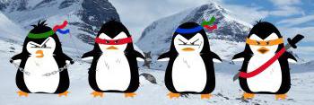 Pinguim SEO