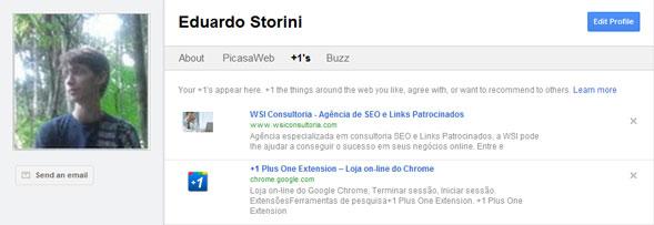 Perfil do Google com o Plus One